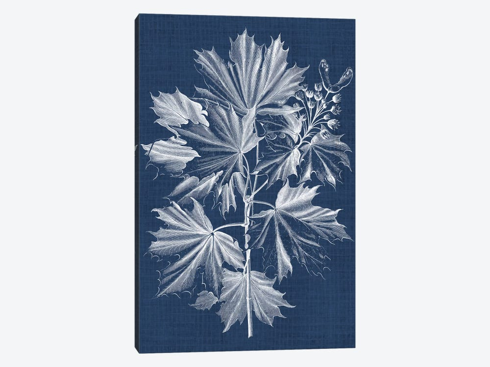 Foliage Chintz V by Vision Studio 1-piece Art Print