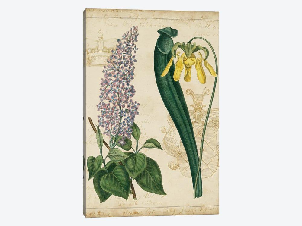 Botanical Repertoire IV by Vision Studio 1-piece Art Print