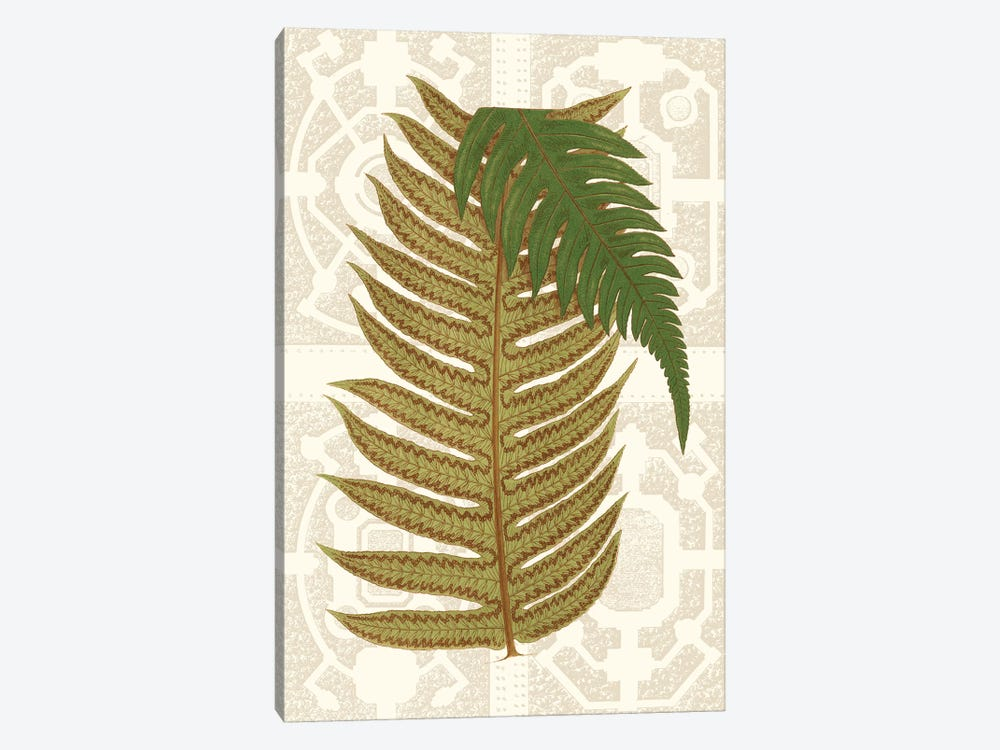 Garden Ferns II by Vision Studio 1-piece Canvas Art