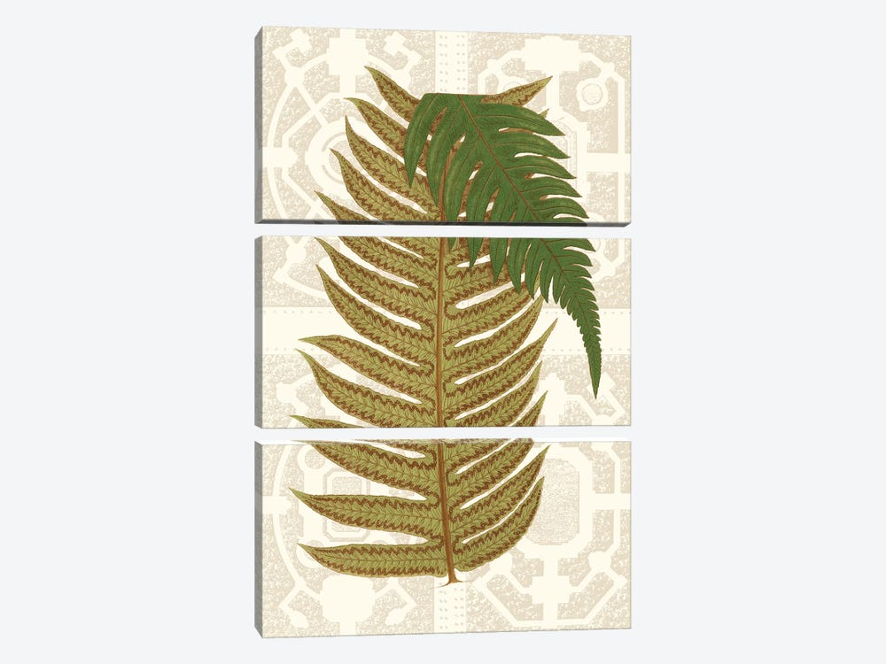 Garden Ferns II by Vision Studio 3-piece Canvas Art