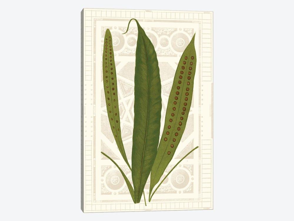 Garden Ferns VI by Vision Studio 1-piece Canvas Art