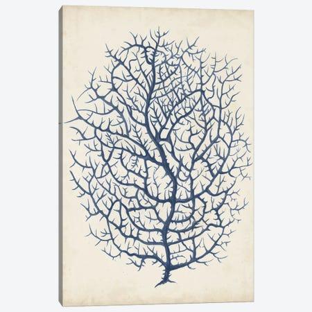 Indigo Coral I Canvas Print #VSN262} by Vision Studio Canvas Artwork