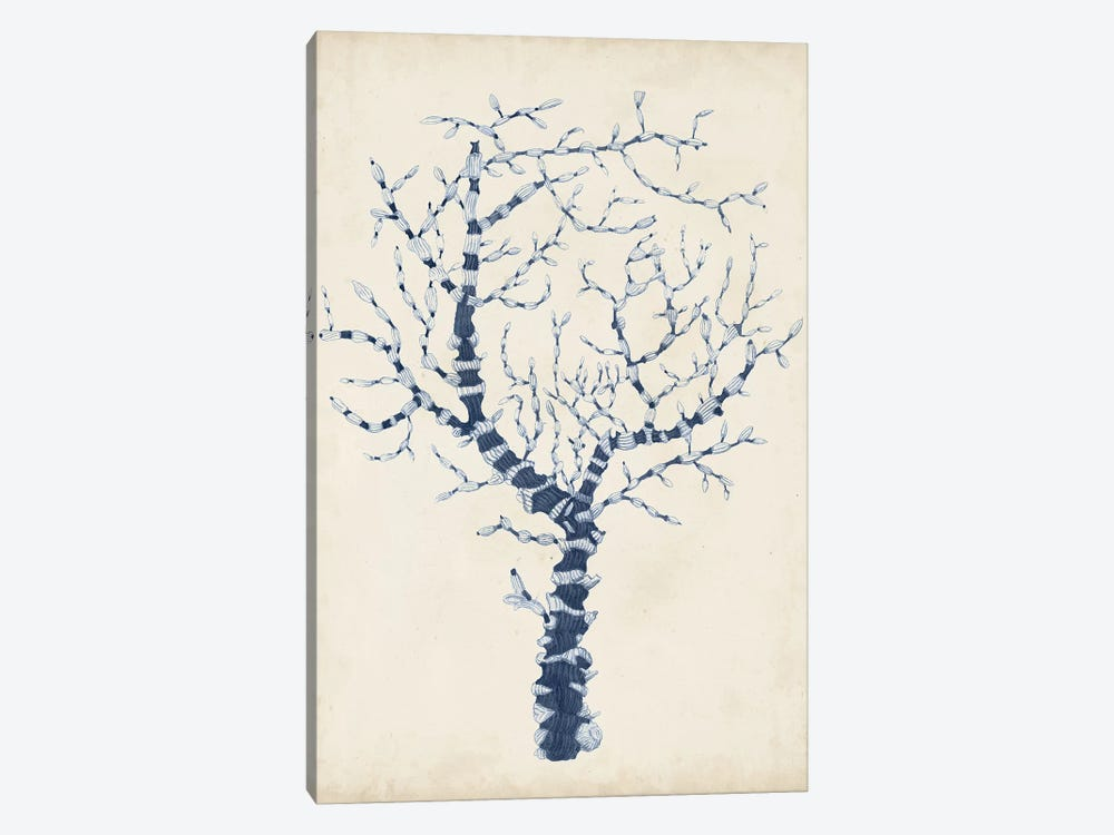Indigo Coral II by Vision Studio 1-piece Canvas Art Print