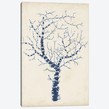Indigo Coral II Canvas Print #VSN263} by Vision Studio Canvas Wall Art