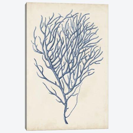 Indigo Coral VI Canvas Print #VSN267} by Vision Studio Canvas Print