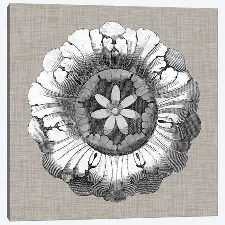 Neutral Rosette Detail II Canvas Print #VSN275} by Vision Studio Canvas Wall Art