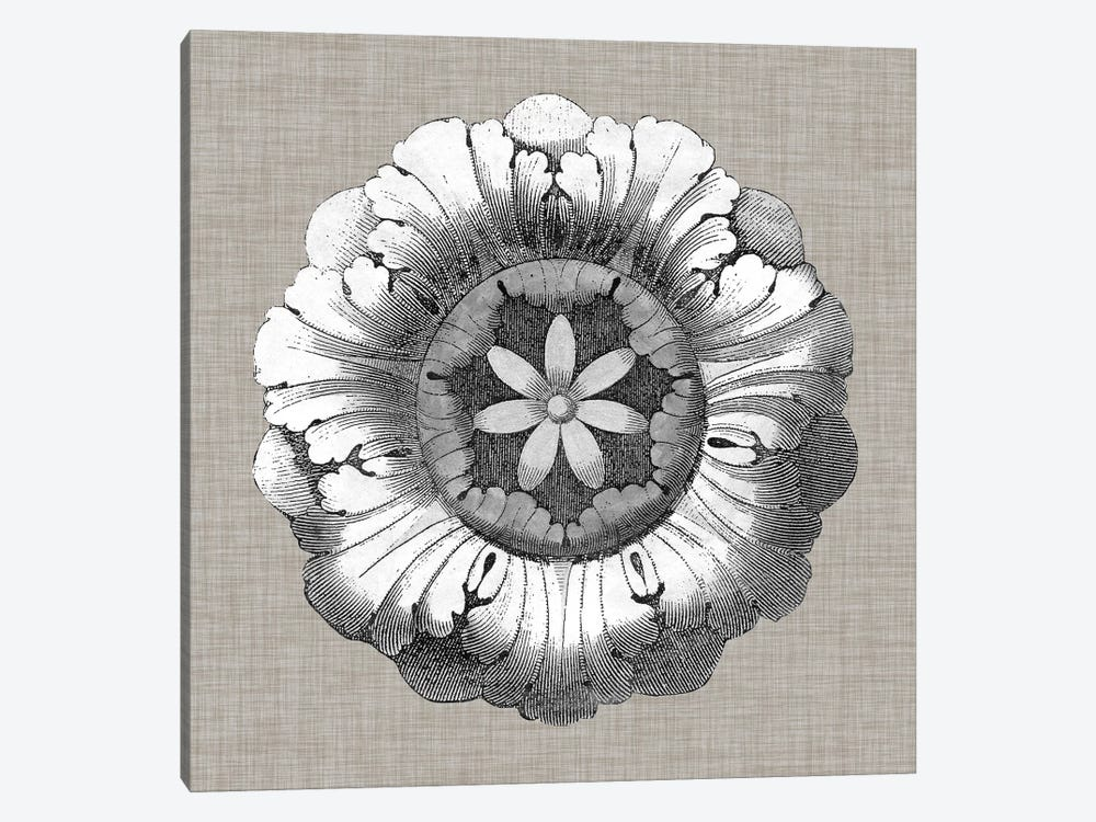 Neutral Rosette Detail II by Vision Studio 1-piece Canvas Artwork