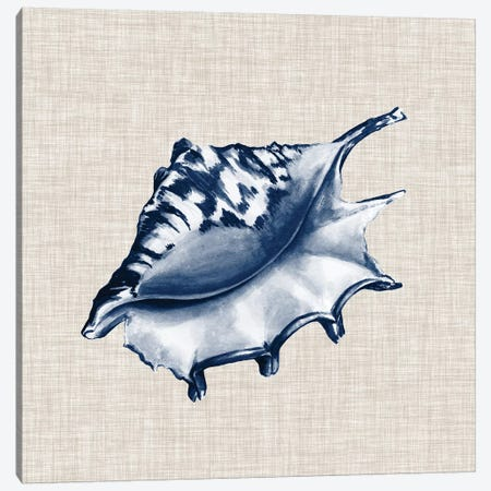 Ocean Memento IV Canvas Print #VSN283} by Vision Studio Canvas Artwork