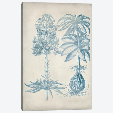 Blue Fresco Floral I Canvas Print #VSN307} by Vision Studio Canvas Art