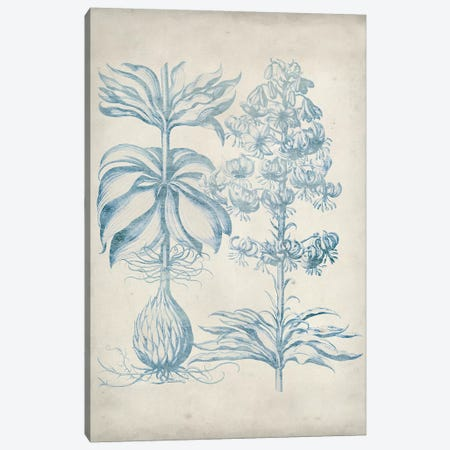 Blue Fresco Floral II Canvas Print #VSN308} by Vision Studio Canvas Print