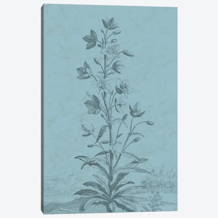 Botanical On Teal II Canvas Print #VSN310} by Vision Studio Canvas Art