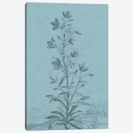 Botanical On Teal II Canvas Print #VSN310} by Vision Studio Canvas Art