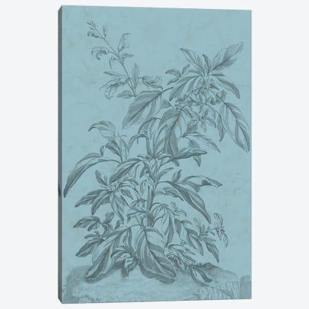 Botanical On Teal III Canvas Print #VSN311} by Vision Studio Canvas Artwork