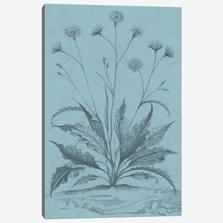Botanical On Teal IV Canvas Print #VSN312} by Vision Studio Canvas Artwork
