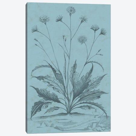 Botanical On Teal IV Canvas Print #VSN312} by Vision Studio Canvas Artwork