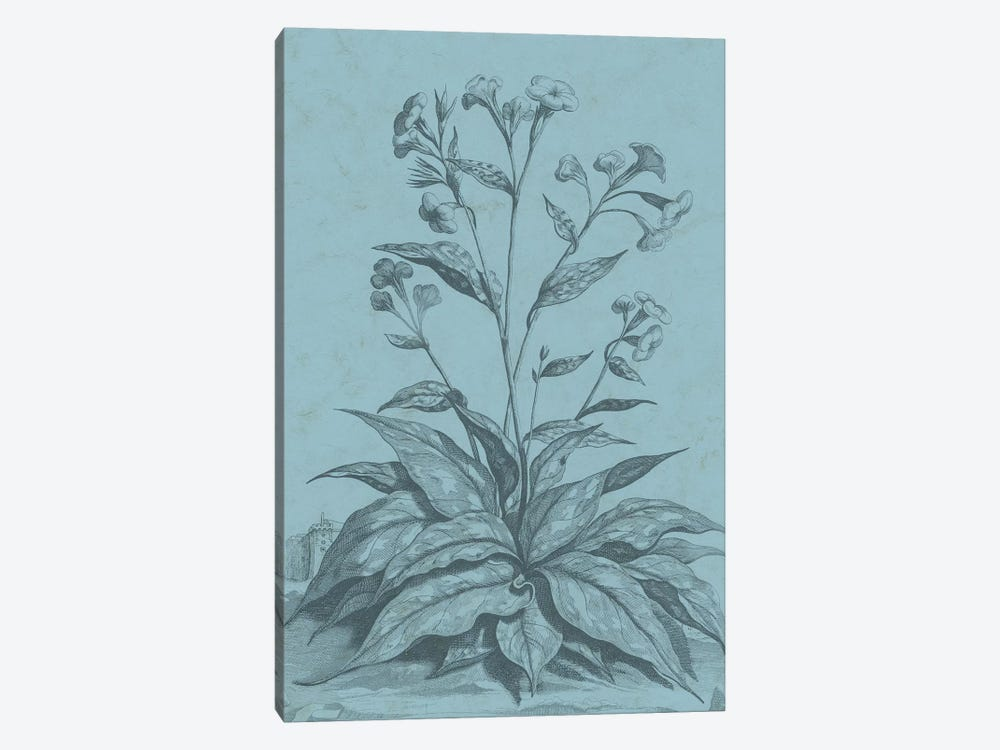 Botanical On Teal VI 1-piece Canvas Artwork