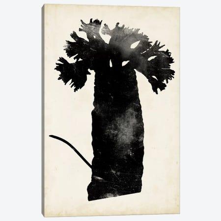 Fern Silhouette II Canvas Print #VSN316} by Vision Studio Canvas Art Print