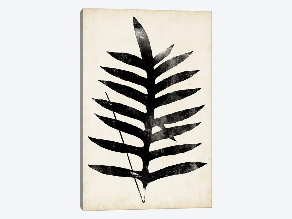 Fern Silhouette III by Vision Studio 1-piece Art Print