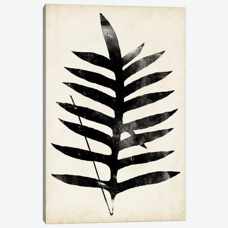 Fern Silhouette III Canvas Print #VSN317} by Vision Studio Canvas Art Print