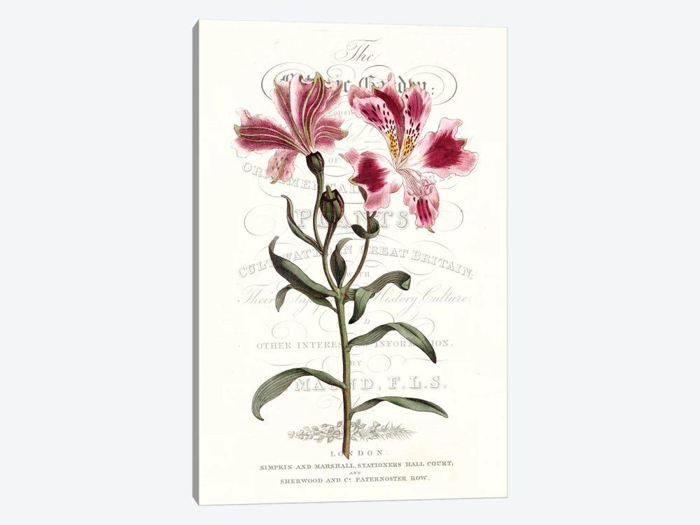 Flower Garden Varietals II by Vision Studio 1-piece Canvas Art Print