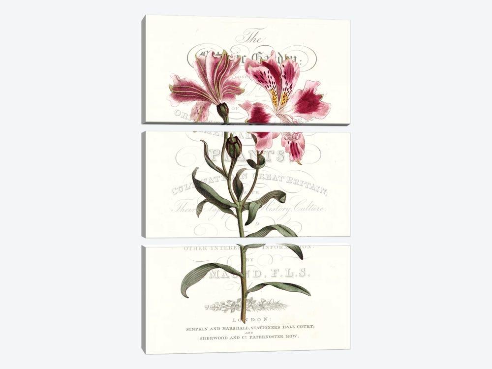 Flower Garden Varietals II by Vision Studio 3-piece Art Print