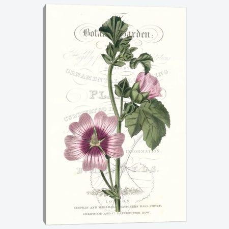 Flower Garden Varietals IV Canvas Print #VSN324} by Vision Studio Canvas Art