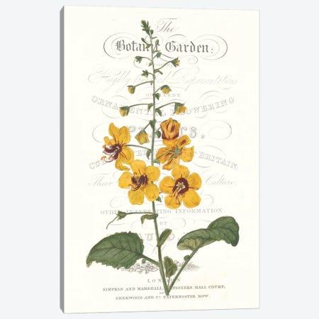 Flower Garden Varietals V Canvas Print #VSN325} by Vision Studio Canvas Art