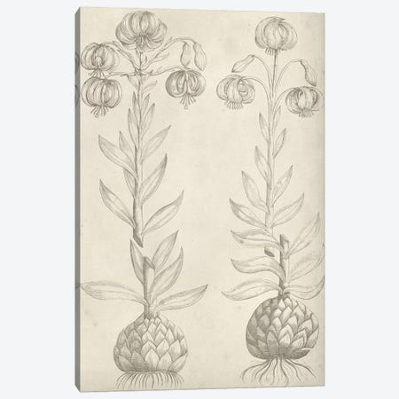 Fresco Floral II Canvas Print #VSN328} by Vision Studio Art Print