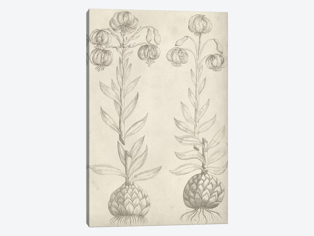 Fresco Floral II by Vision Studio 1-piece Art Print