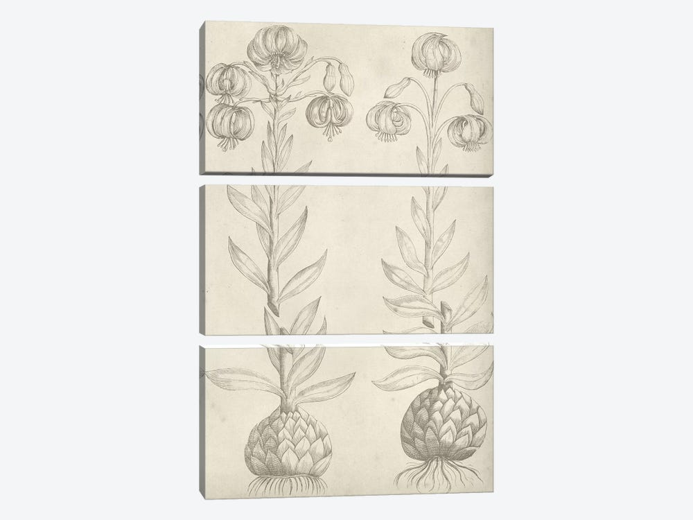 Fresco Floral II by Vision Studio 3-piece Canvas Print