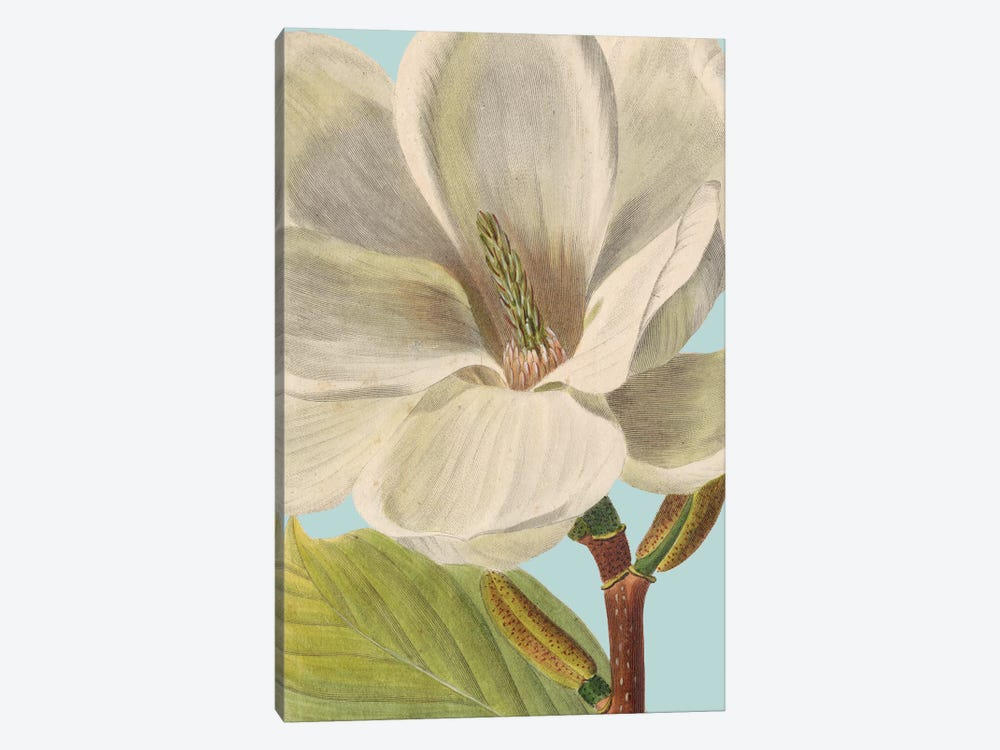 Fresh Florals I by Vision Studio 1-piece Canvas Wall Art
