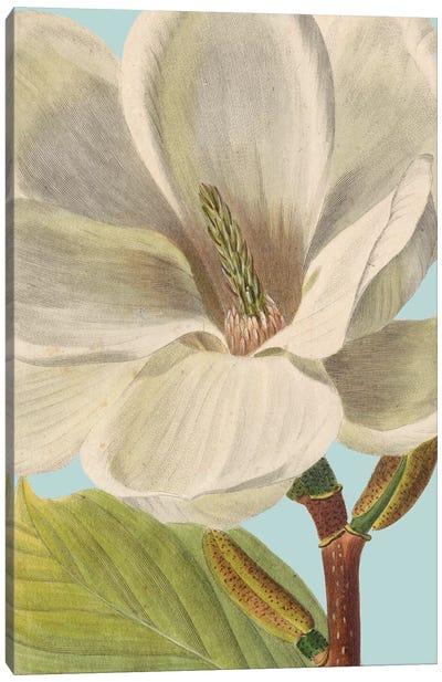 Fresh Florals I Canvas Art Print