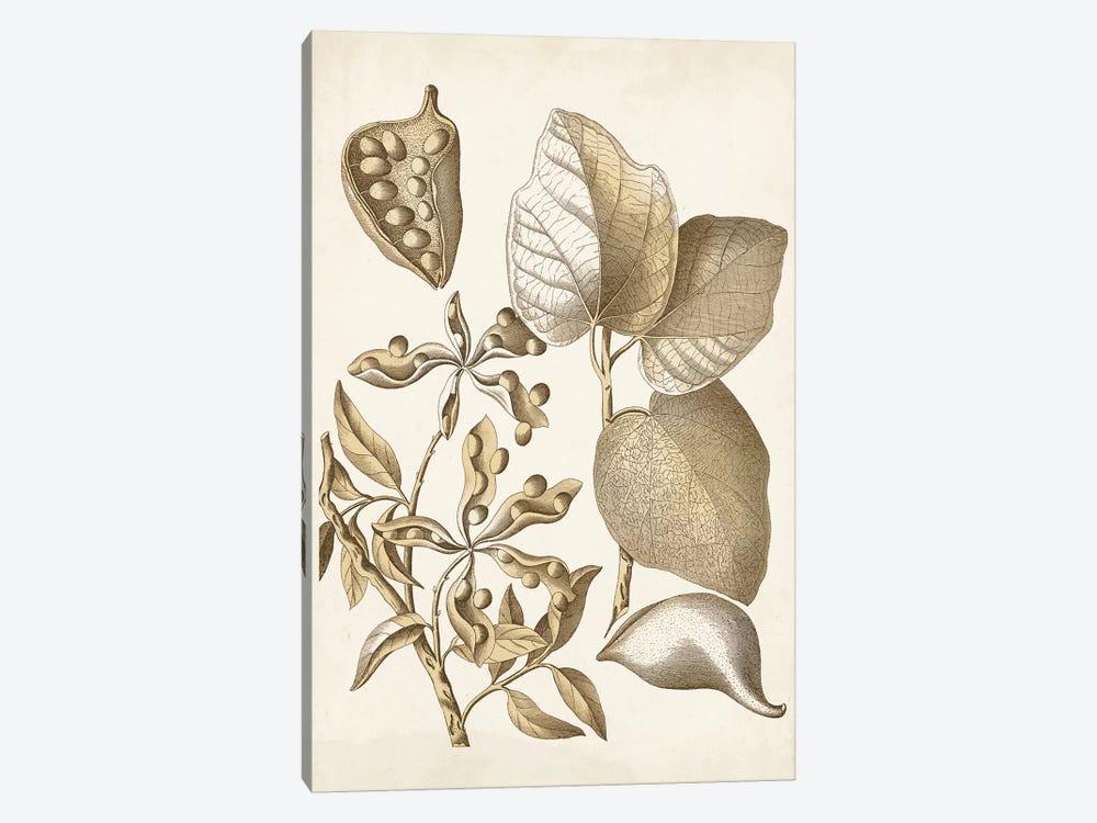 Ochre Botanical III by Vision Studio 1-piece Canvas Art