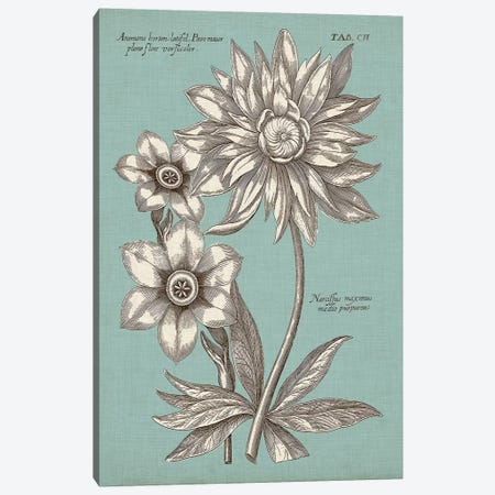 Chambray Chintz I Canvas Print #VSN392} by Vision Studio Canvas Artwork