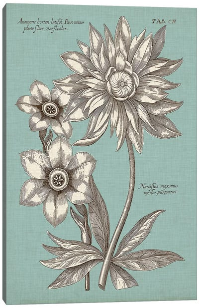 Chambray Chintz I Canvas Art Print