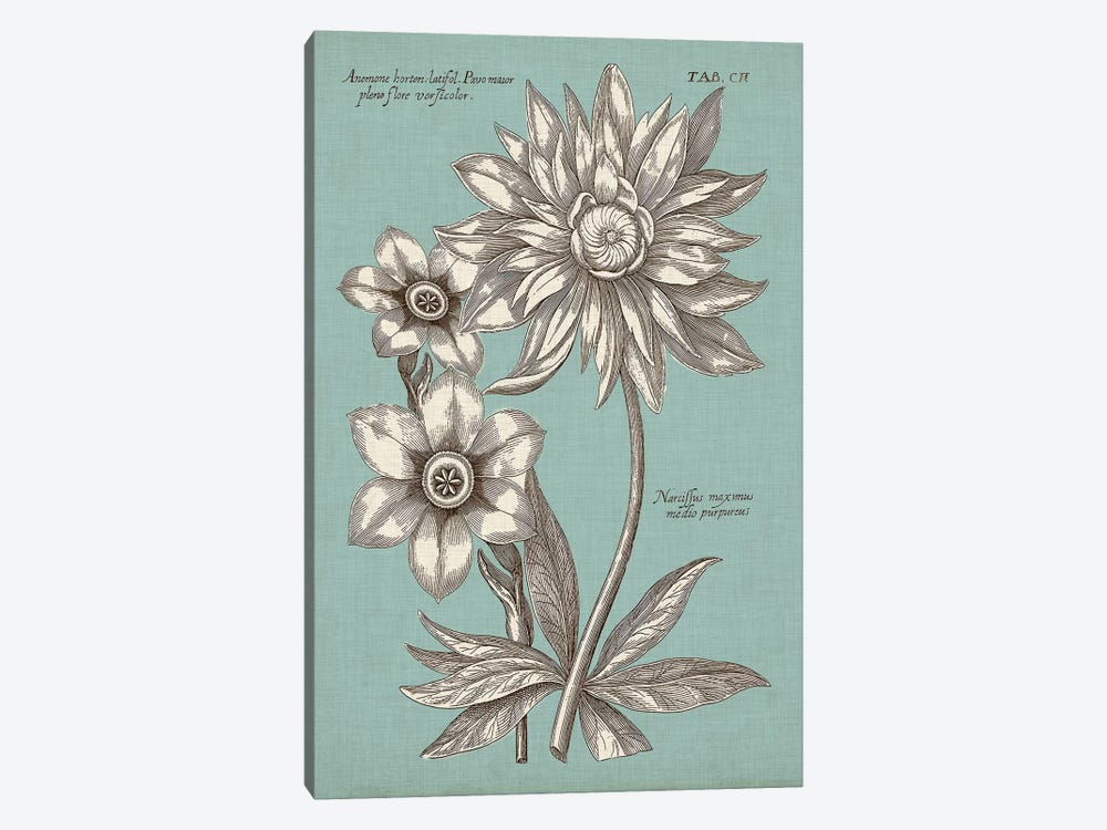 Chambray Chintz I by Vision Studio 1-piece Canvas Wall Art