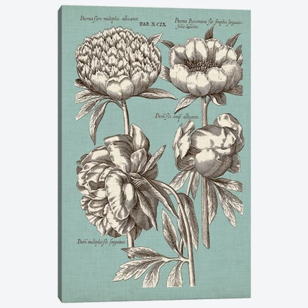 Chambray Chintz II Canvas Print #VSN393} by Vision Studio Canvas Art
