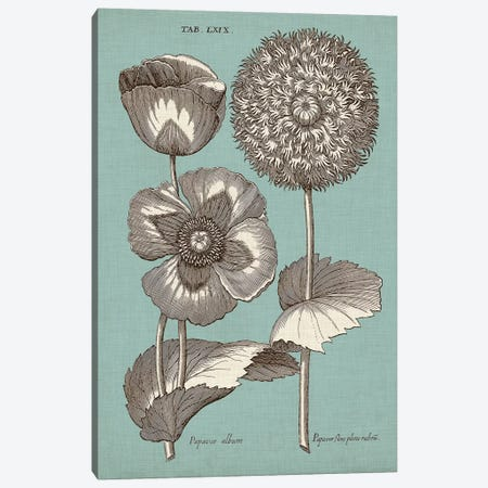 Chambray Chintz III Canvas Print #VSN394} by Vision Studio Art Print