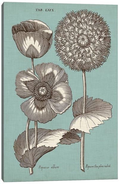 Chambray Chintz III Canvas Art Print