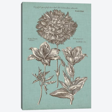 Chambray Chintz IV Canvas Print #VSN395} by Vision Studio Canvas Print