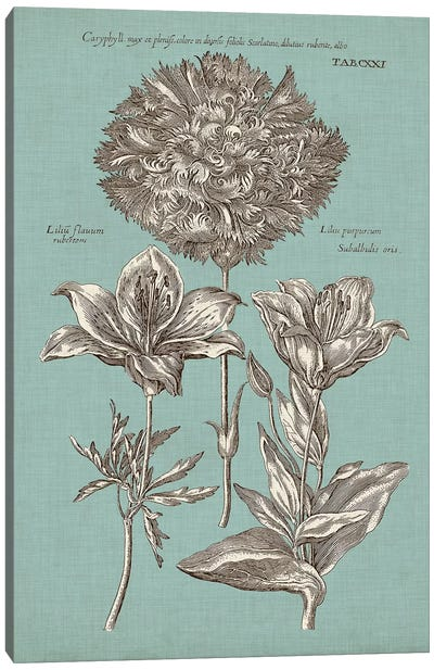 Chambray Chintz IV Canvas Art Print