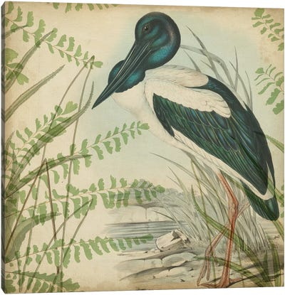 Heron & Ferns I Canvas Art Print