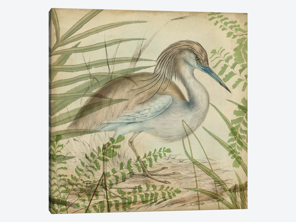 Heron & Ferns II by Vision Studio 1-piece Canvas Wall Art