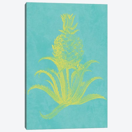 Pineapple Frais II Canvas Print #VSN404} by Vision Studio Canvas Print
