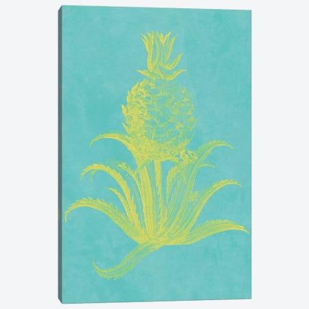 Pineapple Frais II Canvas Print #VSN404} by Vision Studio Canvas Print