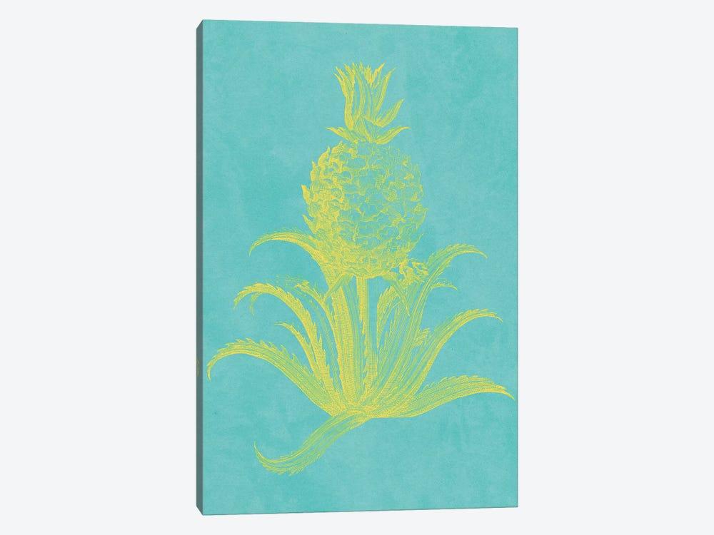Pineapple Frais II by Vision Studio 1-piece Canvas Art