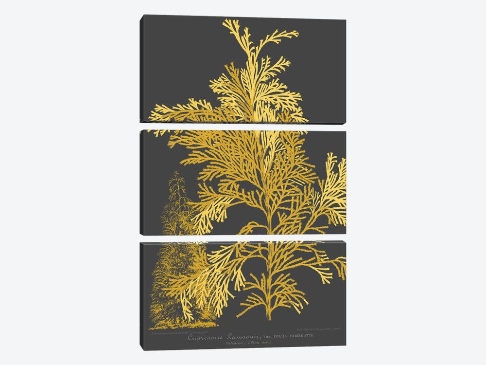 Trees & Leaves I by Vision Studio 3-piece Canvas Art Print