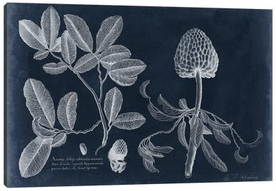 Foliage On Navy II Canvas Art Print