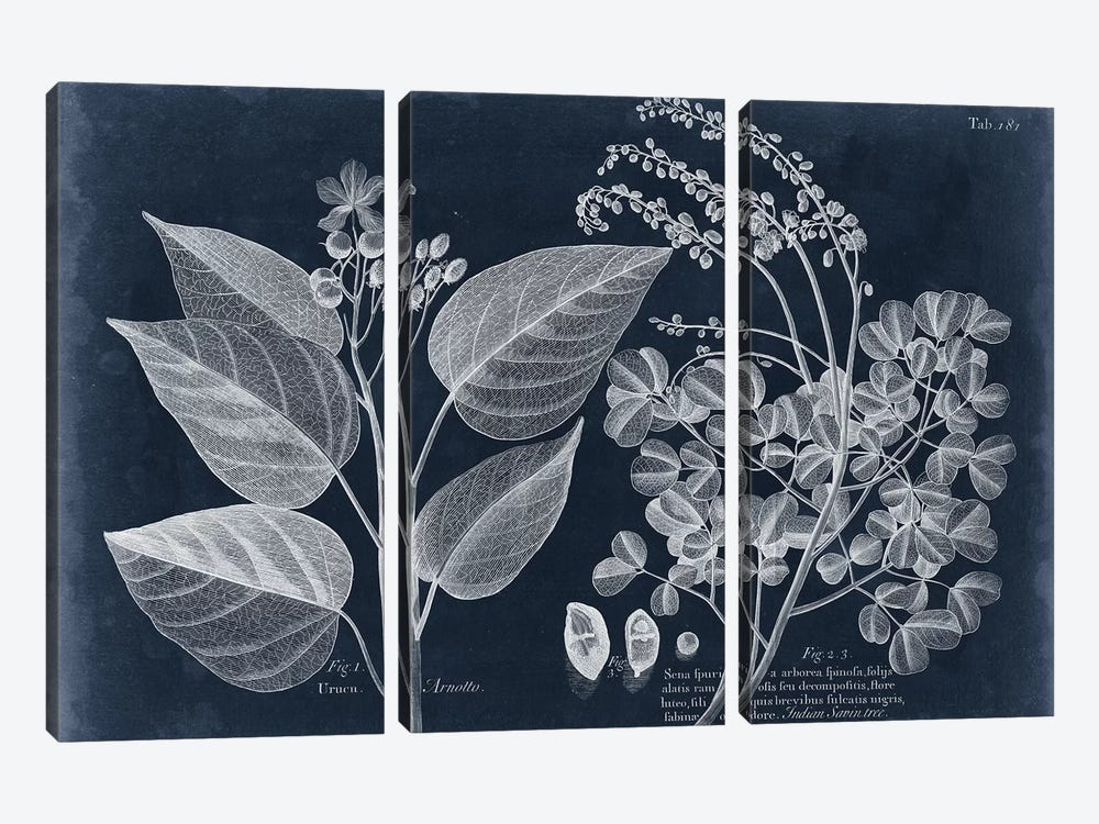 Foliage On Navy III by Vision Studio 3-piece Canvas Art Print