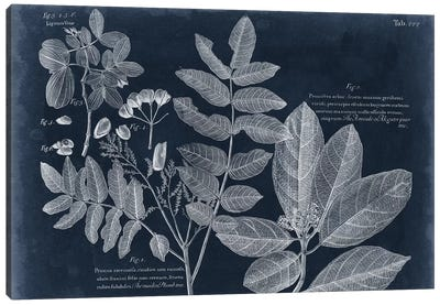 Foliage On Navy V Canvas Art Print